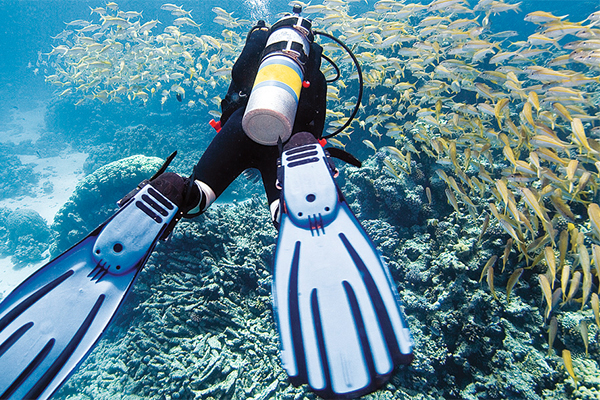 introductory-to-scuba-diving-cozumel